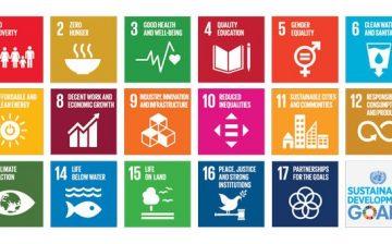 Quels rôles les jeunes devraient-ils jouer pour atteindre les ODD d'ici 2030?